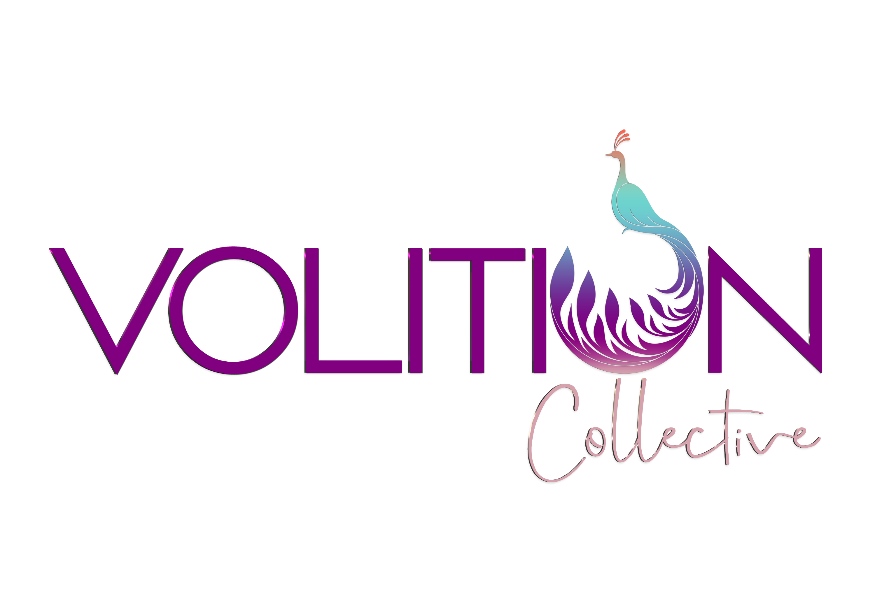 The Volition Collective | Counseling and Wellness Group